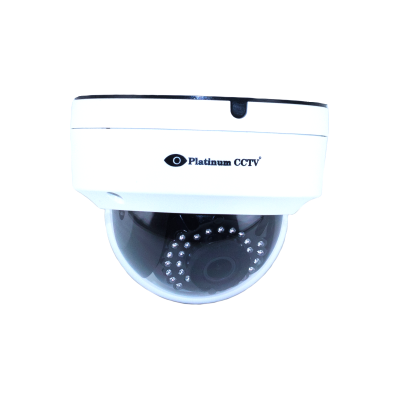 Indoor/Outdoor IP Dome Camera with WDR